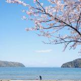 【滋賀】初めての琵琶湖!近江八幡に1泊2日の子連れ旅行してきました