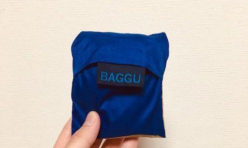 思わず買ってしまったBAGGU(バグー)のエコバッグ。柄とカラーバリエが30種類!